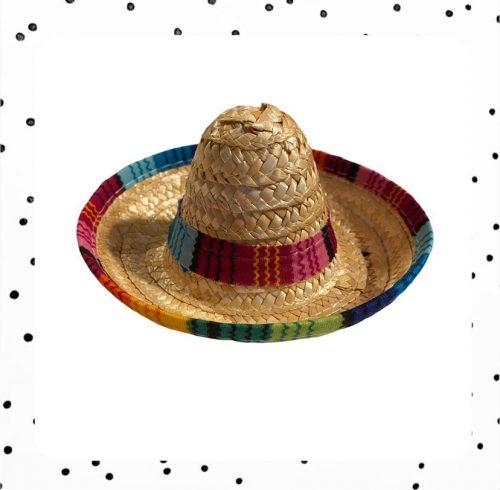 teckel sombrero