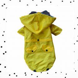 gele teckel regenjas