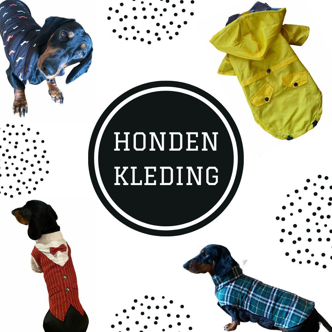 teckel kleding honden
